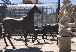 Rzeźba Koń z brązu H240cm i  wiele innych XXL figur