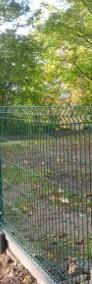 Panel ogrodzeniowy 123x250 cm 3D 2V fi 4mm ocynk+kolor-4