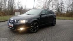 Audi A3 II (8P) 1.9 TDI DPF Ambition
