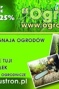 usługi ogrodnicze koszenie karczowanie wycinanie tuje thuja Śląsk-2