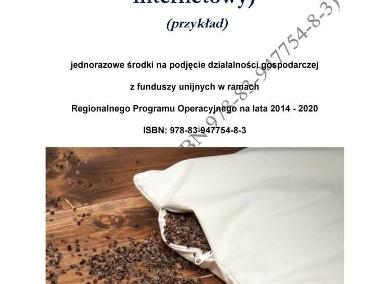 BIZNESPLAN rękodzieło – poduszki (sklep internetowy) (przykład)-1