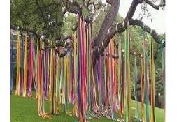 kolorowe taśmy na drzewie