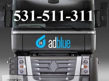 Emulator AdBlue Wyłączanie AdBlue Renault Premium Magnum DXI Rzeszów-1