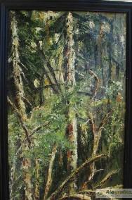 Powalone drzewo-3