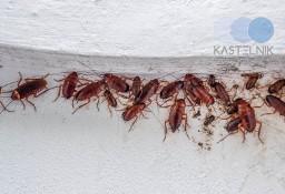 Sprzątanie po zmarłych, zgonach Kalisz, Kastelnik dezynfekcja po zgonie, zmarłym