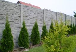 Płot z płyt betonowych / ogrodzenie betonowe / tanio