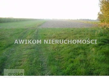 Działka rolno-budowlana Osiny Osiny