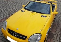 Mercedes-Benz Klasa SLK R170 230