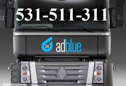 Wyłączanie Adblue Renault Premium DXI Magnum EEV Lublin