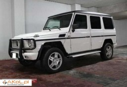 Mercedes-Benz Klasa G W463 *elektryka *webasto *Super cena *klasyk