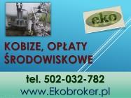 Raport do Kobize, cena tel. 502-032-782, sprawozdanie, obsługa firmy, raportowanie, zgłoszenie zakładu.