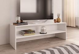 vidaXL Szafka pod TV, biała, 120 x 40 x 40 cm, płyta wiórowa800036