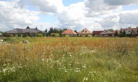 Działka budowlana Tarnowo Podgórne, ul. Tarnowo Podgórne