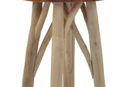 vidaXL Stołek, brązowy, drewno tekowe281638