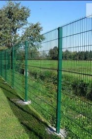 Panel ogrodzeniowy 2D 1230mm x 2500mm 8/6/8 mm oc+kolor-2
