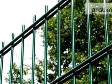 Panel ogrodzeniowy 2D 1230mm x 2500mm 8/6/8 mm oc+kolor-1