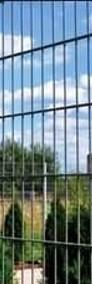 Panel ogrodzeniowy 2D 1230mm x 2500mm 8/6/8 mm oc+kolor-4