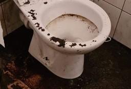 Sprzątanie po zalaniu,sprzątanie po wybiciu kanalizacji/szamba Poznań 24/7
