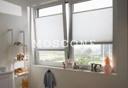 Plisy Wieliczka - Moscone