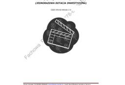 BIZNESPLAN na założenie firmy zajmującej się produkcją utworów audiowizualnych 2011