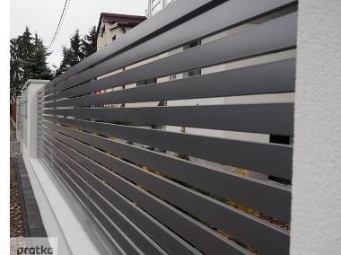 Przęsło ogrodzeniowe 120x200cm P12e ceownik 100x10 ocynk+kolor-1