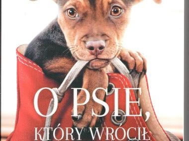 O psie, który wrócił do domu  Warszawa Mokotów-1