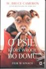 O psie, który wrócił do domu  Warszawa Mokotów