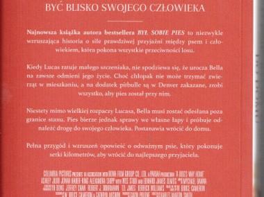 O psie, który wrócił do domu  Warszawa Mokotów-2
