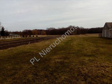 Działka rolna Nowe Groszki