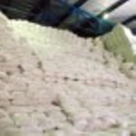Pasze melasowane od 350 zl/tona,drozdze piwne, ziarno, sieczka z lucerny, burak cukrowy 85 zl/tona