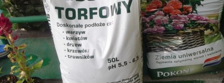 Torf, Substrat torfowy, Podłoże torfowe Warszawa-1