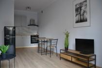 Mieszkanie do wynajęcia Warszawa Mokotów ul. Iwicka – 40 m2