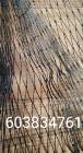 Sieci rybackie wonton żak drgawica przywłoka włoka słępka