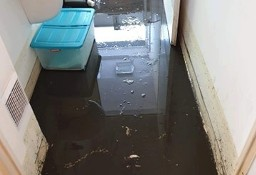Sprzątanie po zalaniu,sprzątanie po wybiciu kanalizacji/szamba Toruń 24/7