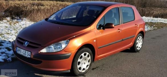 Peugeot 307 I 1.6 Ładny Z Niemiec Opłacony rej. 256