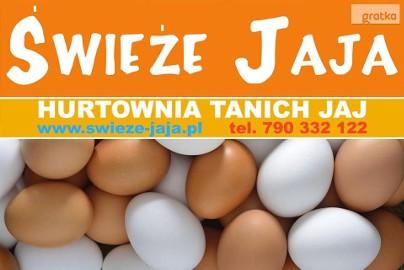 Jaja-Hurt Jaj-Leszno, Śmigiel, Kościan,Stęszew,Luboń,Poznań,Kórnik
