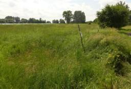 Działka rolna Zofipole