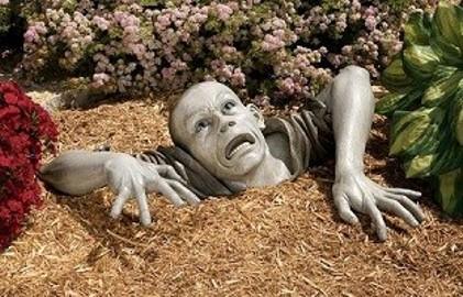 zombie w ogrodzie
