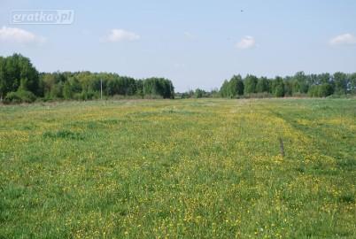 Działka rolna Miedniewice