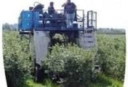 Kurs na kombajny do zbioru owoców