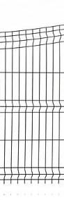 Panel ogrodzeniowy wklęsły 130x250cm fi4mm oc+kolor-3