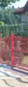Panel ogrodzeniowy wklęsły 130x250cm fi4mm oc+kolor-4