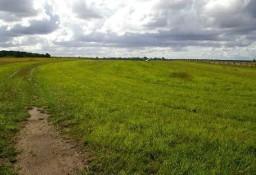 Działka rolna Stare Chojno
