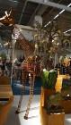 Rzeźba Żyrafa ze stali corten ozdoba do ogrodu  300cm