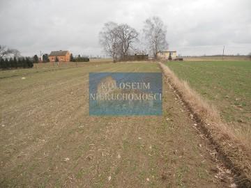 Działka siedliskowa Czernikowo