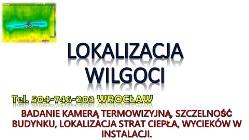 Lokalizacja wilgoci, tel. 504-746-203,  Wrocław, cena. Wykrywanie, badanie i pomiar, sprawdzenie ścian. Grzyb i pleśn na ścianie.