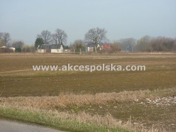 Działka rolno-budowlana Kępa Oborska