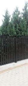 Przęsło ogrodzeniowe, płot, wzór P12 120x200cm ocynk+kolor-3