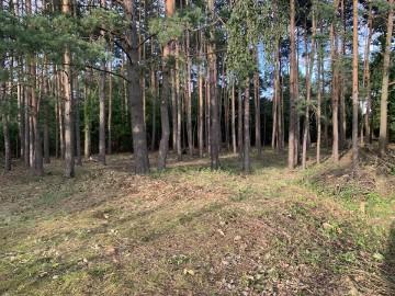 Działka budowlana Laski, ul. Zygmunta Sokołowskiego 22