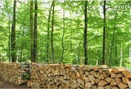 Ukraina.Drewno 15 zl/m3.Produkcja biomasy,pelletu,brykietu,zrebki